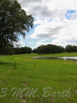 San Juan Ter. Citrus County, Crystal River, Farm for Sale