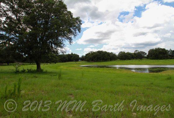 San Juan Ter. Citrus County, Crystal River, Farm for Sale