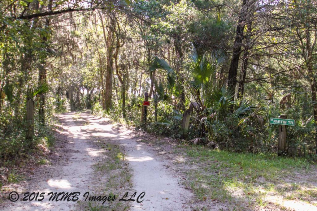 Real Estate for Sale, Listing Photo, Spring Park Court 11265, Citrus County, Homosassa, Florida, 3448